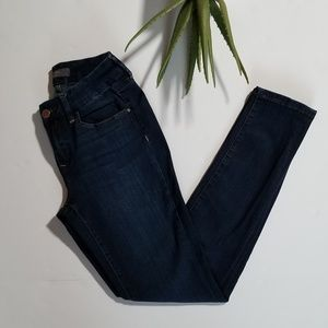 The Limited Curvy Skinny Jeans